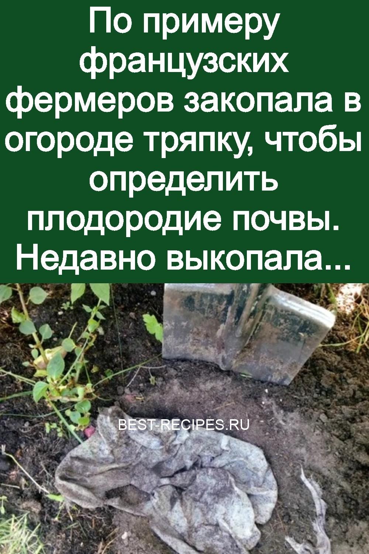 По примеру французских фермеров закопала в огороде тряпку, чтобы определить плодородие почвы. Недавно выкопала 3